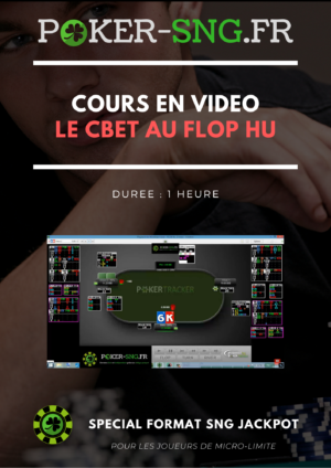 COURS POKER En VIDEO Le Cbet au flop HU